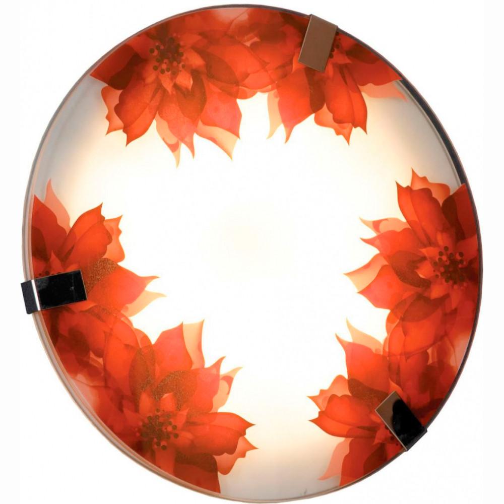 Купить Светильник настенно-потолочный Lussole LSN-5252-01