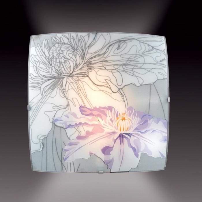 Настенный светильник Sonex Iris 1230
