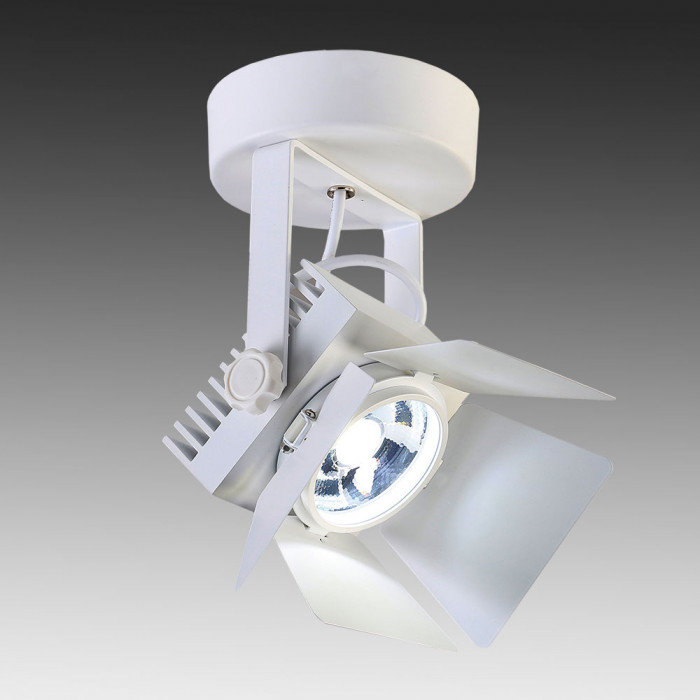 Светильник точечный Favourite Projector 1771-1U