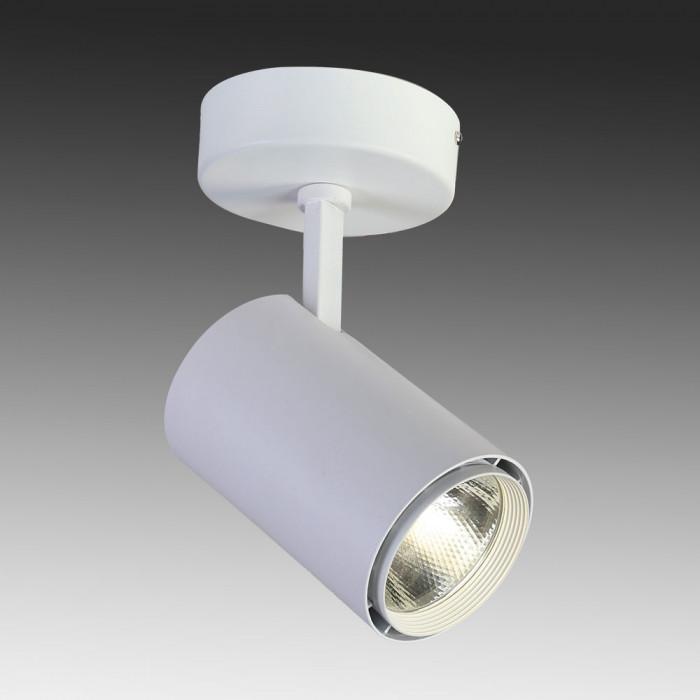 Светильник точечный Favourite Projector 1773-1U