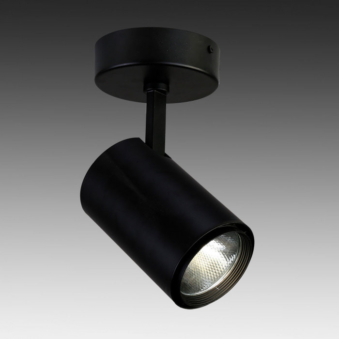 Светильник точечный Favourite Projector 1772-1U