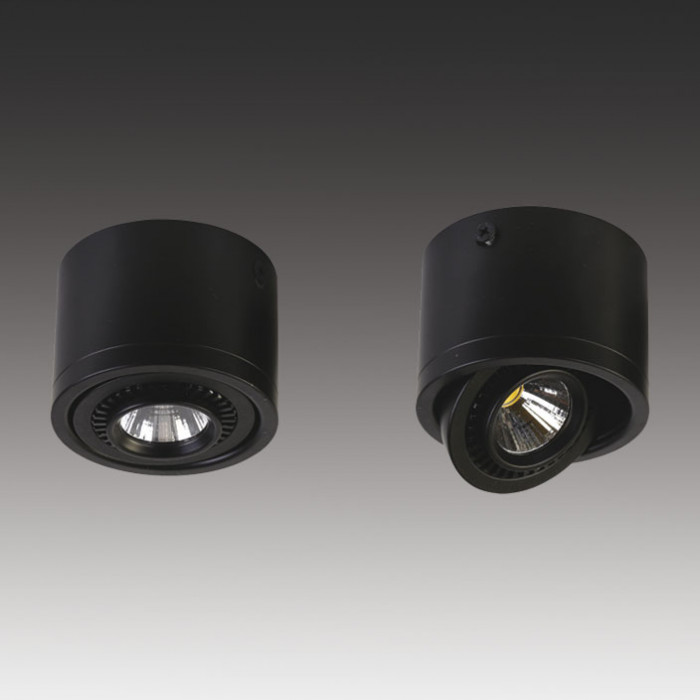 Светильник точечный Favourite Reflector 1777-1C