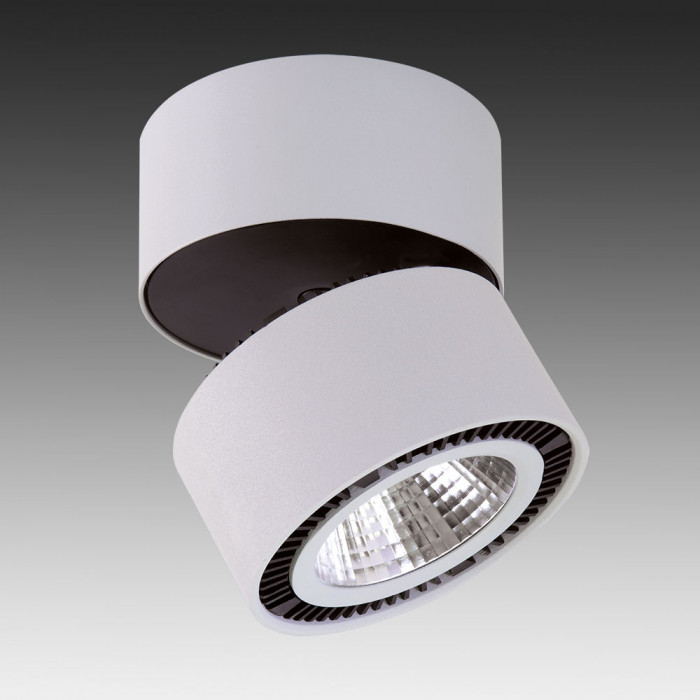 Светильник точечный Lightstar Forte Muro 213850