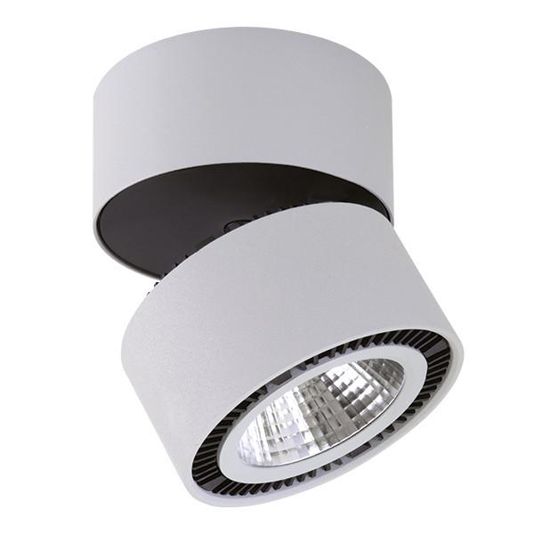 Светильник точечный Lightstar Forte Muro 214839