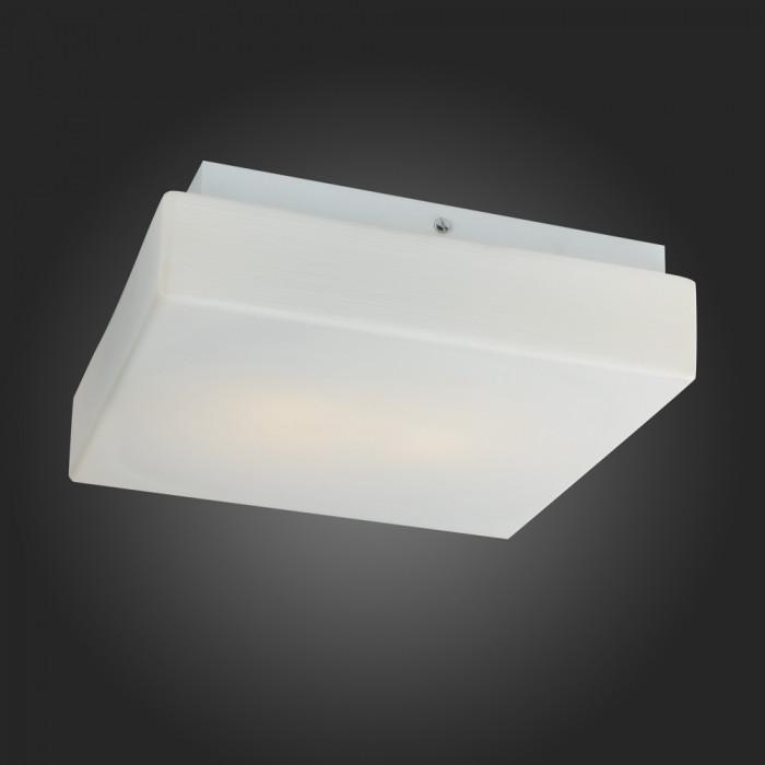 Светильник настенно-потолочный ST-Luce SL503.502.02