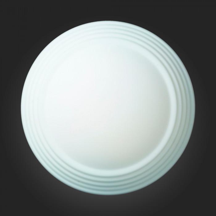 Светильник настенно-потолочный ST-Luce SL506.502.02