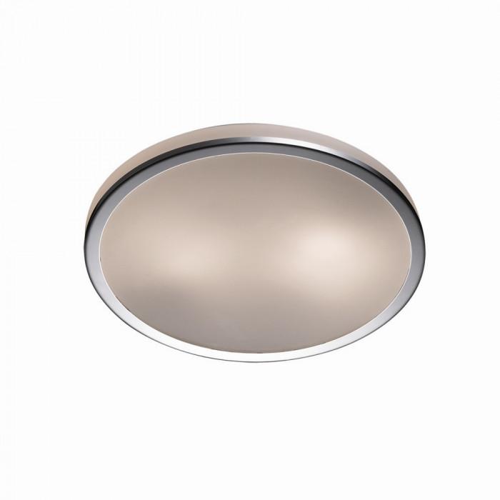Светильник настенно-потолочный Odeon Light Yun 2177/2C