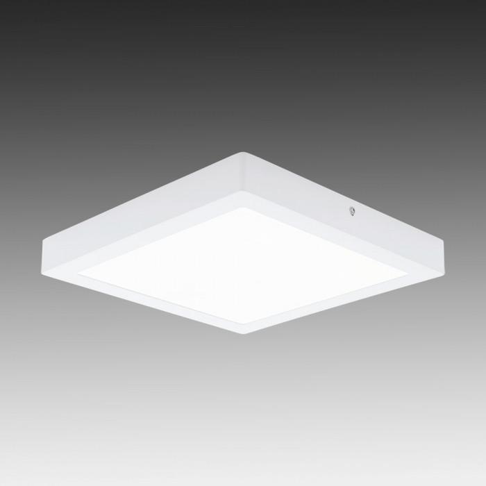 Светильник настенно-потолочный Eglo Fueva 1 94538