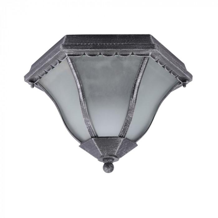 Уличный потолочный светильник Arte Lanterns A1826PF-2BS