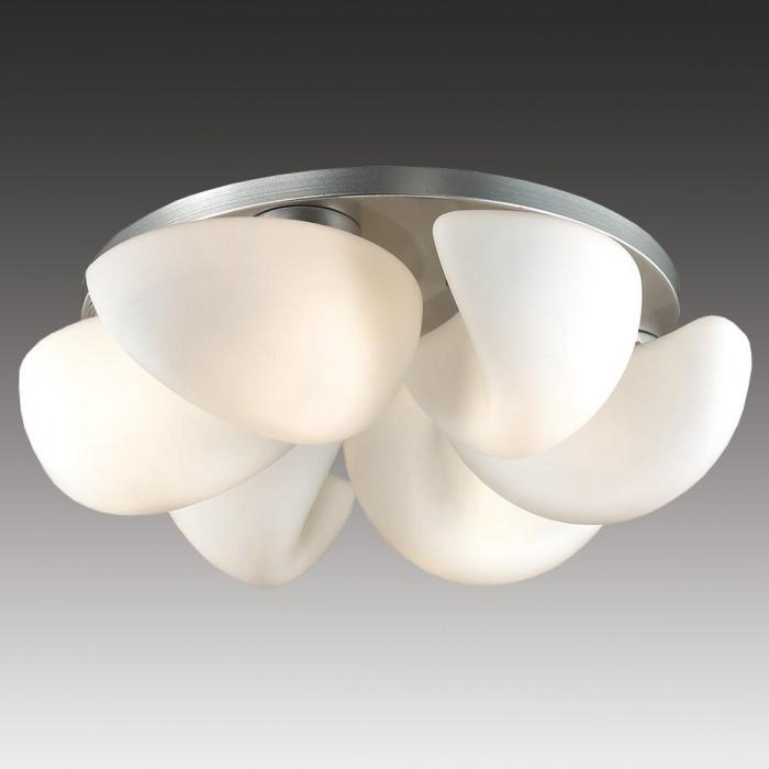 Светильник потолочный ST-Luce SL538.502.06