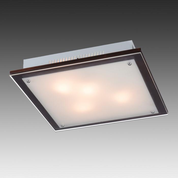 Светильник настенно-потолочный Sonex Ferola Vengue 3242V