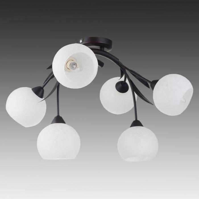 Светильник потолочный Lussole Bagheria LSF-6283-06