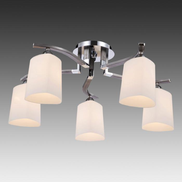 Светильник потолочный Maytoni Eurosize 1 MOD131-CL-05-N