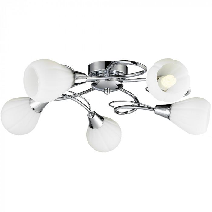 Светильник потолочный Lussole Abriola LSC-8303-05