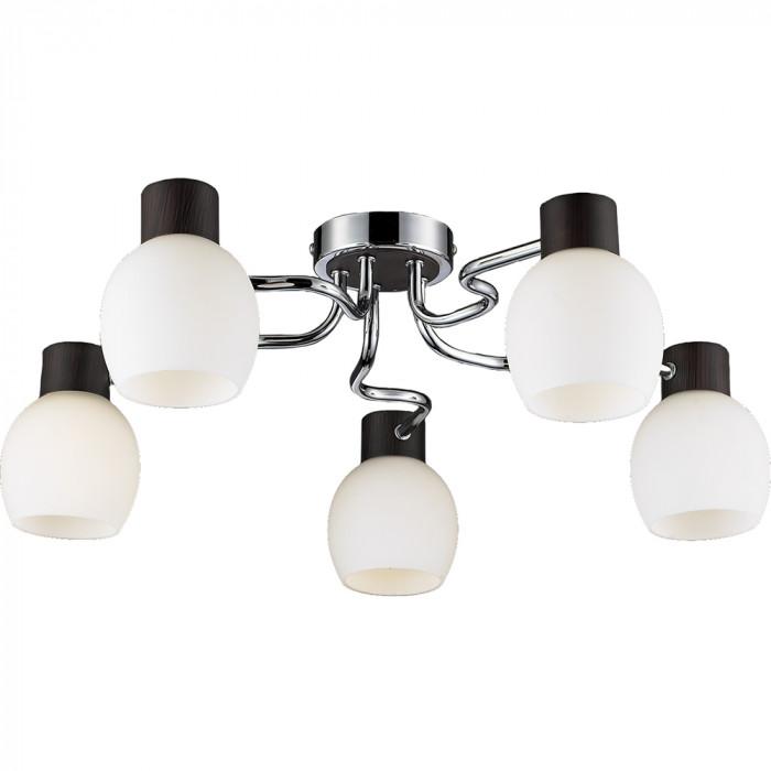 Светильник потолочный Lussole Carpino LSC-8503-05