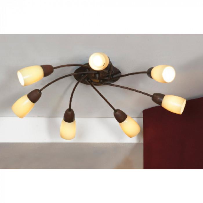 Светильник потолочный Lussole Cevedale LSQ-6917-07