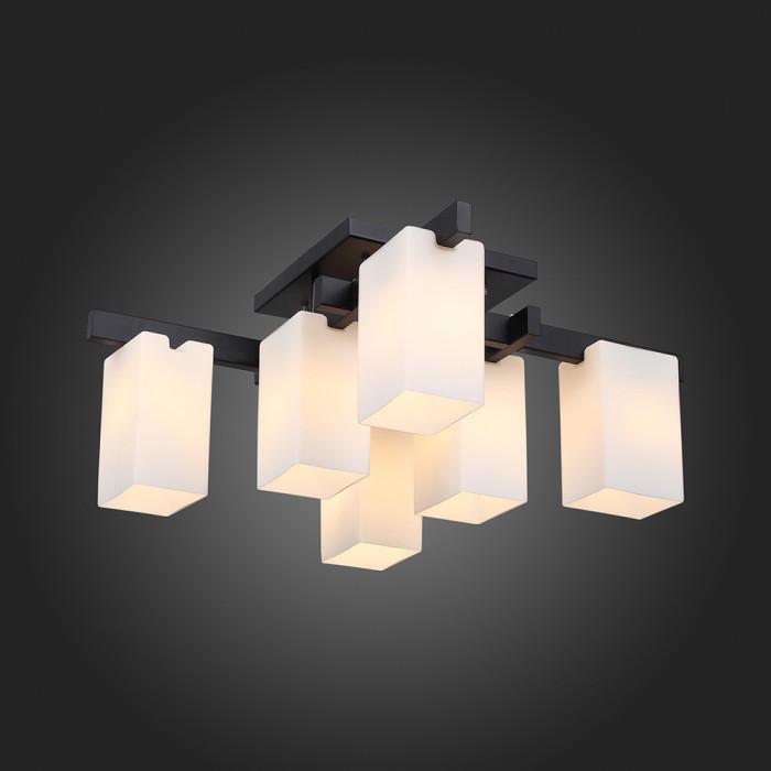 Светильник потолочный ST-Luce Caset SL541.402.06