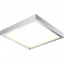 Светильник настенно-потолочный Globo Tamina 41662