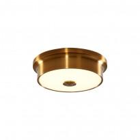 Светильник настенно-потолочный Citilux Фостер CL706212