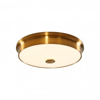 Светильник настенно-потолочный Citilux Фостер CL706232