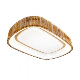 Светильник потолочный RiForma Neon 1-4792-FG Y LED