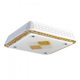 Светильник потолочный RiForma Decor 1-5053-WH Y LED