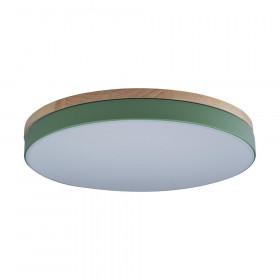 Светильник потолочный Loft It Axel 10001/36 Green