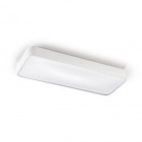 Светильник потолочный LEDS C4 Ras 15-4686-14-M1