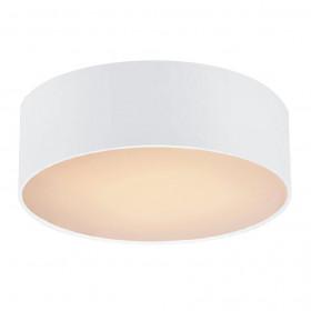 Светильник настенно-потолочный Favourite Cerchi 1515-2C