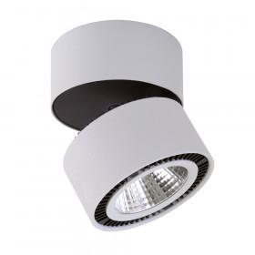 Светильник точечный Lightstar Forte Muro 214819