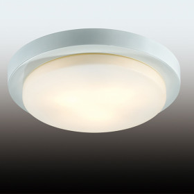 Светильник настенно-потолочный Odeon Light Holger 2745/3C