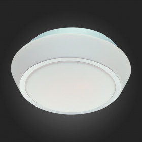 Светильник настенно-потолочный ST-Luce SL496.502.03