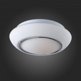 Светильник настенный ST-Luce SL497.502.01