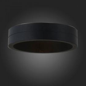 Уличный настенно-потолочный светильник ST-Luce SL562.401.01