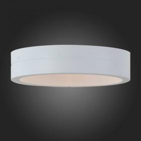 Уличный настенно-потолочный светильник ST-Luce SL562.501.01