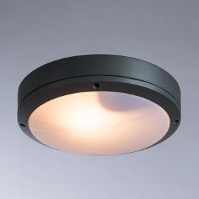 Уличный настенно-потолочный светильник Arte City A8154PF-2GY
