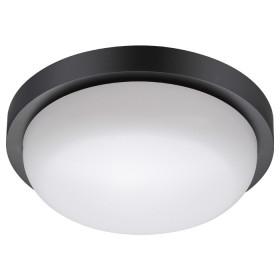 Уличный настенно-потолочный светильник Novotech Opal 358017