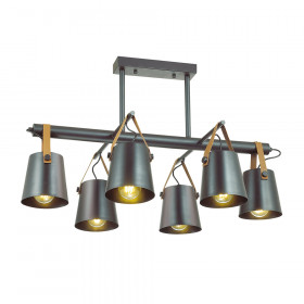 Светильник потолочный Lumion Tristen 3641/6C