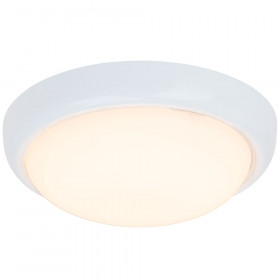 Светильник настенно-потолочный Brilliant Vigor G94151/05