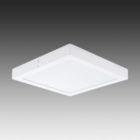 Светильник настенно-потолочный Eglo Fueva 1 96169