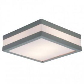 Уличный настенно-потолочный светильник Brilliant Matteo 96233/22