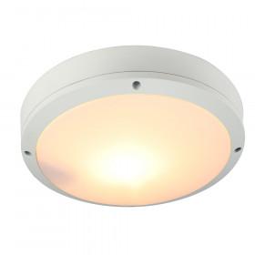 Уличный настенно-потолочный светильник Arte City A8154PF-2WH