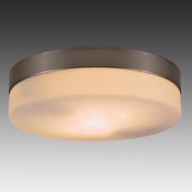 Светильник настенно-потолочный Globo Opal 48402