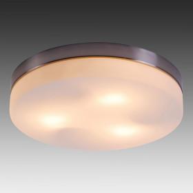 Светильник настенно-потолочный Globo Opal 48403