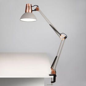 Лампа настольная Eurosvet Worker 01021/1