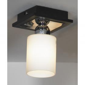 Светильник точечный Lussole Caprile LSF-6117-01