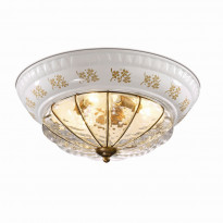 Светильник настенно-потолочный Odeon Light Asula 2278/3A