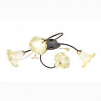Светильник потолочный Favourite Edera 1601-4C