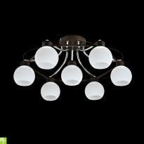 Светильник потолочный Maytoni Eurosize 10 TOC010-07-N