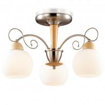 Светильник потолочный Odeon Light Narbo 2658/3C